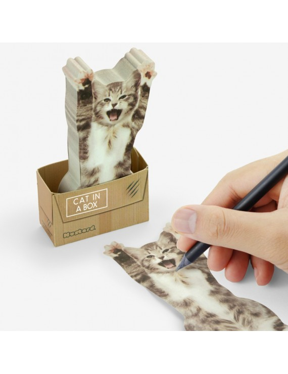 Sticky Note Cat In A Box